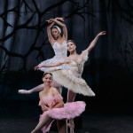 THE-SWAN,-THE-FAIRY-&-THE-PRINCESS-(3)